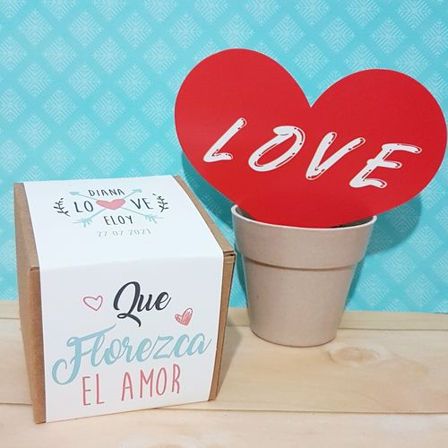 kit cultivo flores love